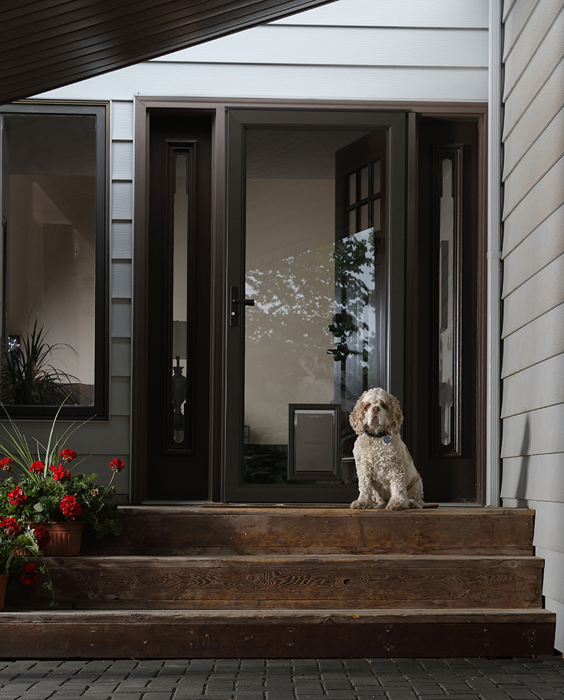 Larson Pet Door Fullview