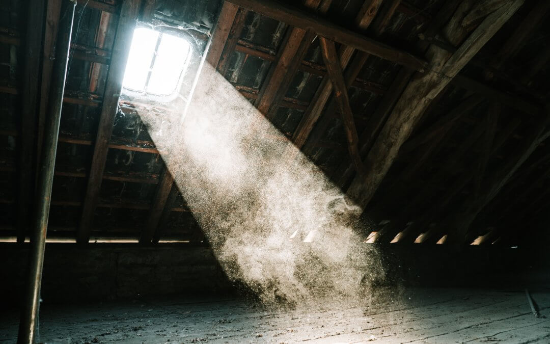 Are You Making the Most of Your Attic?